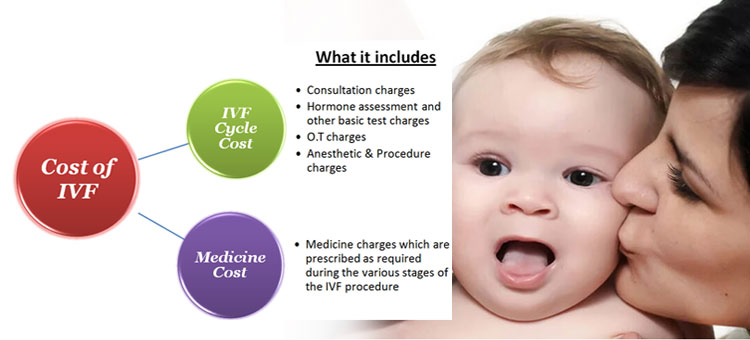 Cost of IVF Treatment in India-Detailed Information