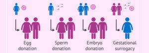 Egg-Sperm-and-Embryo-Donation